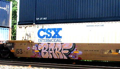 barf (timetomakethepasta) Tags: barf fart freight train graffiti csx intermodal palm