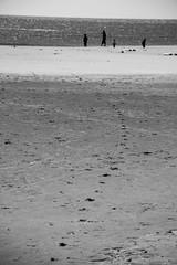 Pas dans le sable (icodac) Tags: mer canon noiretblanc sable nb plage portlanouvelle chateaudesable eos70d