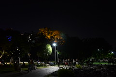 Night Times Short Exposures 2 (ragamuff_in) Tags: night istanbul kadky short exposure tree light