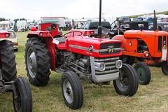 Massey Ferguson WYA 841G (johnmorris13) Tags: masseyferguson ferguson wya841g tractor
