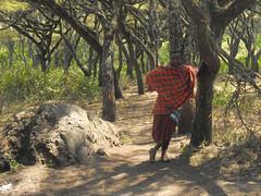 DSCN0283 (David Bygott) Tags: africa tanzania misigiyo maasai ngorongoro nca warrior moran olpul