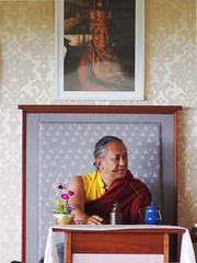 Dzigar Kongtrul Rinpoche teaching (Olivier Rich) Tags: dzigar kongtrul rinpoche bohatch mangala shri bhuti