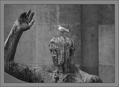 L'homme et l'oiseau (afantelin) Tags: noiretblanc blackwhite pretobranco oiseau bird mouette paris trocadero statue sculpture