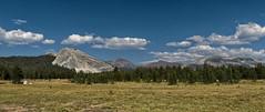 One last look (LeftCoastKenny) Tags: yosemitenationalpark tuolumnemeadows mountains trees grass clouds boulders rocks