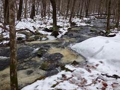 Wrack Meadow Brook (FoxInTheWoods) Tags: ice nature water stream brook streams creeks brooksncreeks wrackmeadowbrook summerstarwildlifesanctuary