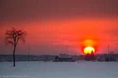 Les champs en feu (www.sophiethibault.ca) Tags: aurore champs fermes la15 laurentides lever mirabel québec soleil tamron150600mm