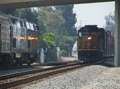Meeting Amtrak 14 (vcrailfan1999) Tags: up train trains amtrak unionpacific camarillo 72 railfan geep uprr railfanning gp402 1374 p42dc amtrakp42 localfreight amtrakcoaststarlight amtrak72 unionpacificgp40 lof63 santabarbarasub oxnardlocal up1374