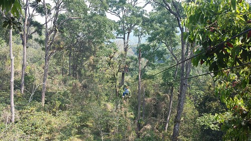 Chiang Mai: Exploring the city and pushing the adrenaline level with some zip-lining and downhill mountain-biking :)