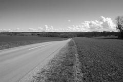 Landevej (Raphs) Tags: road sky blackandwhite bw monochrome rural turn landscape denmark spring view bend diagonal clear curve acres danmark canoneos350d countryroad raphs sjlland tamronspaf1750mmf28xrdiiildaspherical gentlehills prstevej