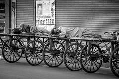 Puducherry (chamorojas) Tags: bw india sleeper pondicherry 60d puducherry albertorojas chamorojas