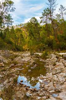 Reflejos en Río Borosa - Sierra de Cazorla