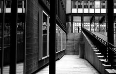 At the end of the barrier (pascalcolin1) Tags: blackandwhite noiretblanc guard mirrors barrier barriere streetview poteaux escaliers gardien photoderue miroirs paris5 urbanarte photopascalcolin