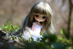 Em~ (Local Ghost) Tags: dal milch