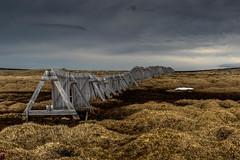 Fence on stormy plataeu_2 (Sweet Cheeks Adventures) Tags: iceland midnightsun remoteness wildandwoolly sweetcheeksadventures