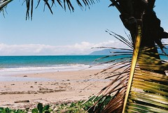 Like a postcard from the 70's (Katie Tarpey) Tags: ocean sea film beach water 35mm sand kodak australia palm queensland nikonfm10 portdouglas kodakportra400 nikkor50mm14