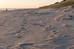 TH20160507A608558 (fotografie-heinrich) Tags: strand spuren ostsee dne zingst stdteortschaften
