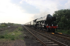 Flying Scotsman through Pilning (Emma Spanswick) Tags: travel friends cloud sun london nature station train evening track tour transport engine rail railway loco trains funday steam railwaystation trainstation engines transportation locomotive thrash railwayline trainspotting coaches steamengine steamtrain steaming scotsman flyingscotsman trainspotter steamlocomotive enthusiasts spotters railwaysstation 60103 steamdays