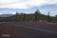 Cinder Field (Lorencz Photography) Tags: arizona usa southwest history field america volcano lava unitedstates flagstaff cinder volcanology sunsetcratervolcano sanfranciscovolcanicfield