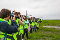 DME Airport Spotting (Andrey Wild) Tags: airport outdoor spotting dme domodedovo