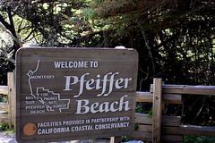 Julia Pfeiffer Burns State Park - Big Sur (oriana.italy) Tags: california usa bigsur montereycounty pfeifferstatepark paificocean img0196