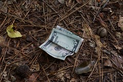 DSC08940 (Capt Kodak) Tags: summer trash cash nationalparkservice fiver chattahoocheerivernationalrecreationarea medlockbridgepark