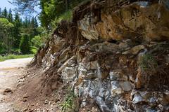IMG_0850-279 (Martin1104) Tags: fotografie natuur bergen landschap vlinders yagodina snp bulgarije natuurfotografie natuurreis