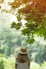 (CarolienCadoni..) Tags: tree netherlands hat dof bokeh fullframe drenthe backshot nieuwbuinen sal70200g2 sonyalta99