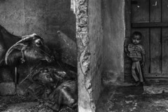 (ayashok photography) Tags: portrait people bw india eye portraits asian blackwhite eyes nikon asia indian monotone desi karnataka bharat bharath desh barat 2014 cwc barath mandya nikkor24120mmvr nikonstunninggallery ayashok nikond700 chennaiweekendclickers ayashokphotography ayp1853