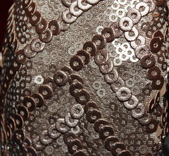 ITBE In Sequins (up close) (JennFL2) Tags: sequins anja in itbe