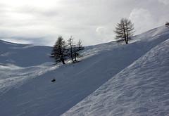 (J N Photography) Tags: voyage travel winter wild cloud mountain snow ski france nature montagne alpes sony hiver montage colored neige nuage alp arbre serrechevalier alpesdusud sonyalpha77 jeremynuyten jeremynuytenphotography