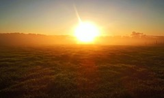 Morning Sunrise (possumgirl2) Tags: sunrise morninglight nzsunrise ruralsunrise