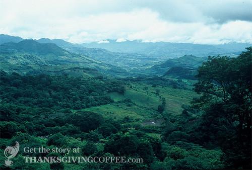 The NIcaragua Landscape