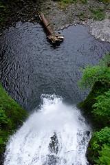 Falling (Burnt T045T) Tags: blue tree green water rock log heart ripple falls ripples multnomah element gravel elemental