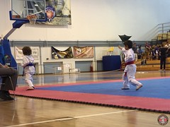 stefanou_15_5_2016_knockdown_48