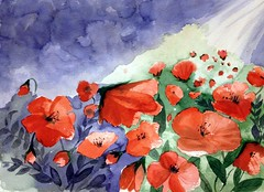 poppy...we.....watakushitachi..on Explored (l*aura**) Tags: art me water colors watercolor colore arte you io poppies tu acqua noi papaveri acquarello