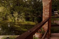 profumo d'autunno (lauretta michelutti) Tags: fiume giallo