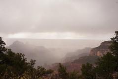Foggy Canyon (jaazzzw) Tags: travel arizona grandcanyon rainy northrim nofilter scenicsnotjustlandscapes