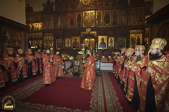 The Meeting of Martyr Evnikian's Head / Встреча мироточивой главы мученика Евникиана Критского (6)
