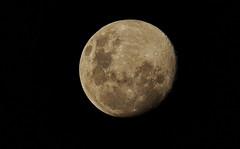 2016-06-18_18-35-05 (J Rutkiewicz) Tags: moon sunset
