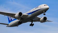 All Nippon Airways   ANA   Boeing787-981   JA833A   Tokyo Haneda Airport (akg414p010) Tags: japan canon tokyo ana nh  boeing haneda hnd hanedaairport   allnipponairways  rjtt  boeing787 7879   b789 ef70200mmf28lisiiusm ja833a eos7dmark