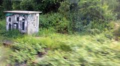 ASE. (universaldilletant) Tags: graffiti frankfurt ase