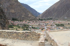 IMG_6752 (University of Pennsylvania Alumni) Tags: peru machu picchu cuzco llama