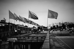 Drapeau (Andr Gourizan-bi) Tags: loire nantes drapeau