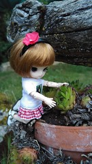 I'll take care of you.... (-nickless-) Tags: outdoors doll little dal muñeca rotchan minidal gozoki obitsu11cm