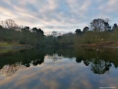 Keston ponds (Steve Denny) Tags: trees sky lake water clouds reflections kent spring pond panasonic bromley keston kestonponds lumixtz35