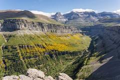 140721-Ordesa-677.jpg (Neus de Saavedra) Tags: espaa europa huesca es pirineos sobrarbe valledeordesa travesas pnordesa