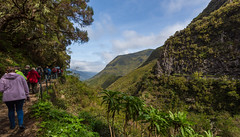 Maderia Explorers Walk - Rabacal to 25 Springs (Peter J Dean) Tags: family holiday portugal landscape nationalpark view walk april pt madeira levada dandelions 2015 rabacal laurelforest canonef1635mmf28liiusm canoneos5dmarkiii madeiraexplorers