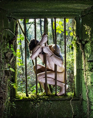(MaRuXa fotografía) Tags: naturaleza verde canon salinas ruinas chico pontevedra granja desnudo rejas maruxa vilaboa uxio