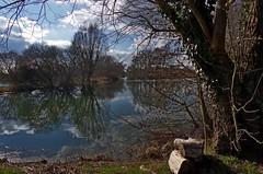1099-52L (Lozarithm) Tags: pallingtonlakes dorset landscape lakes reflections k50 1770 smcpda1770mmf4alifsdm pentax zoom