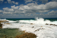 IMG_5590 (PicNic Cards) Tags: ocean waves caves palmtrees caribbean caymanbrac